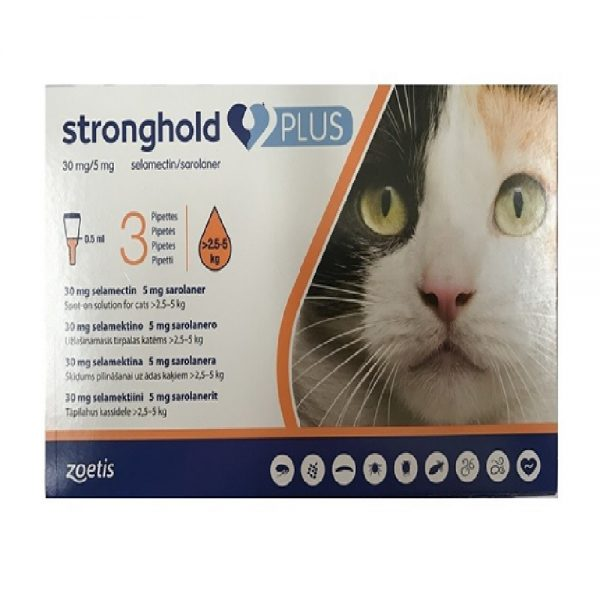 Stronghold Plus Kat